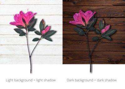 Adjust shadows to background.